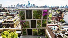 Balcon ou jardin partagés : comment jardiner en ville ?
